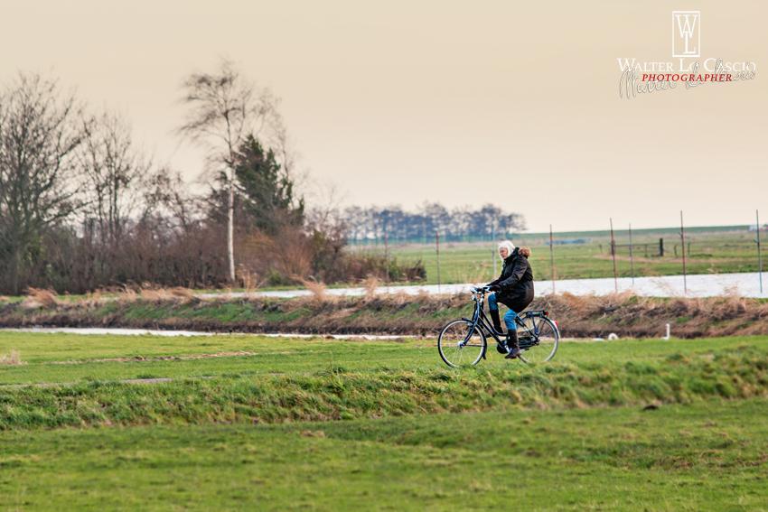 nederland-2014_13934543264_o.jpg