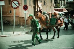 Marocco_Fes_IMG_3805