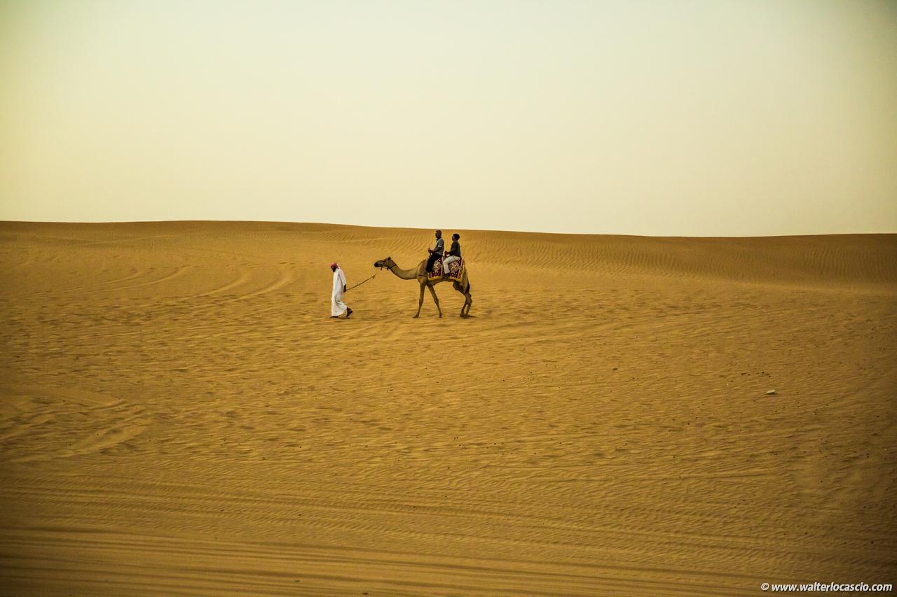 dubai_deserto (37)