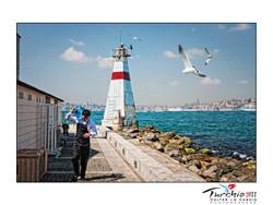 turchia-2011-istanbul_6175578771_o.jpg