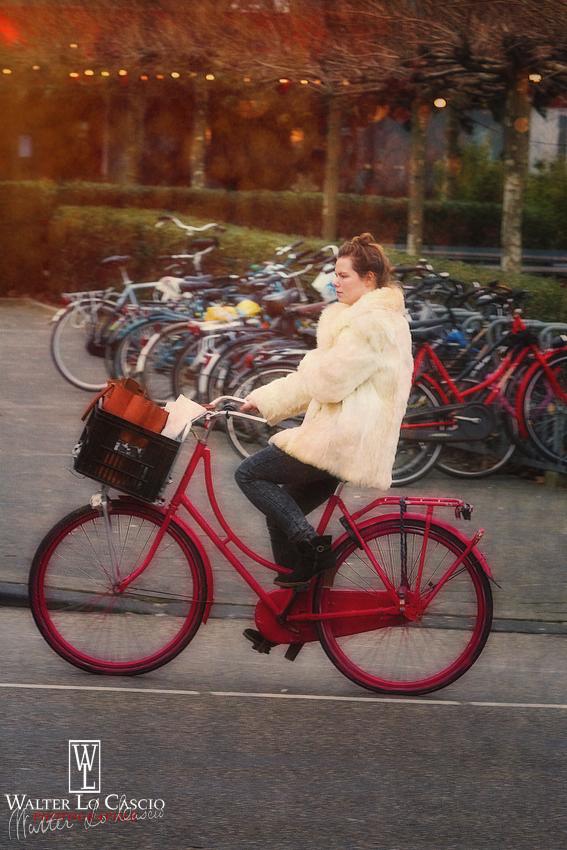 nederland-2014_11948413934_o.jpg