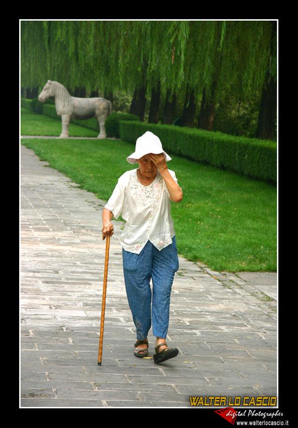 beijing---pechino_4079456617_o.jpg