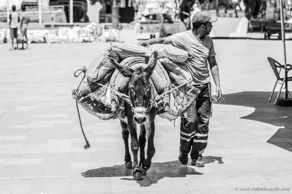 Marocco_MOULAY_DRISS_ZERHOUN _IMG_0005