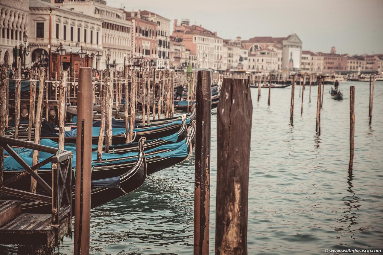 Venezia_Photo (11)