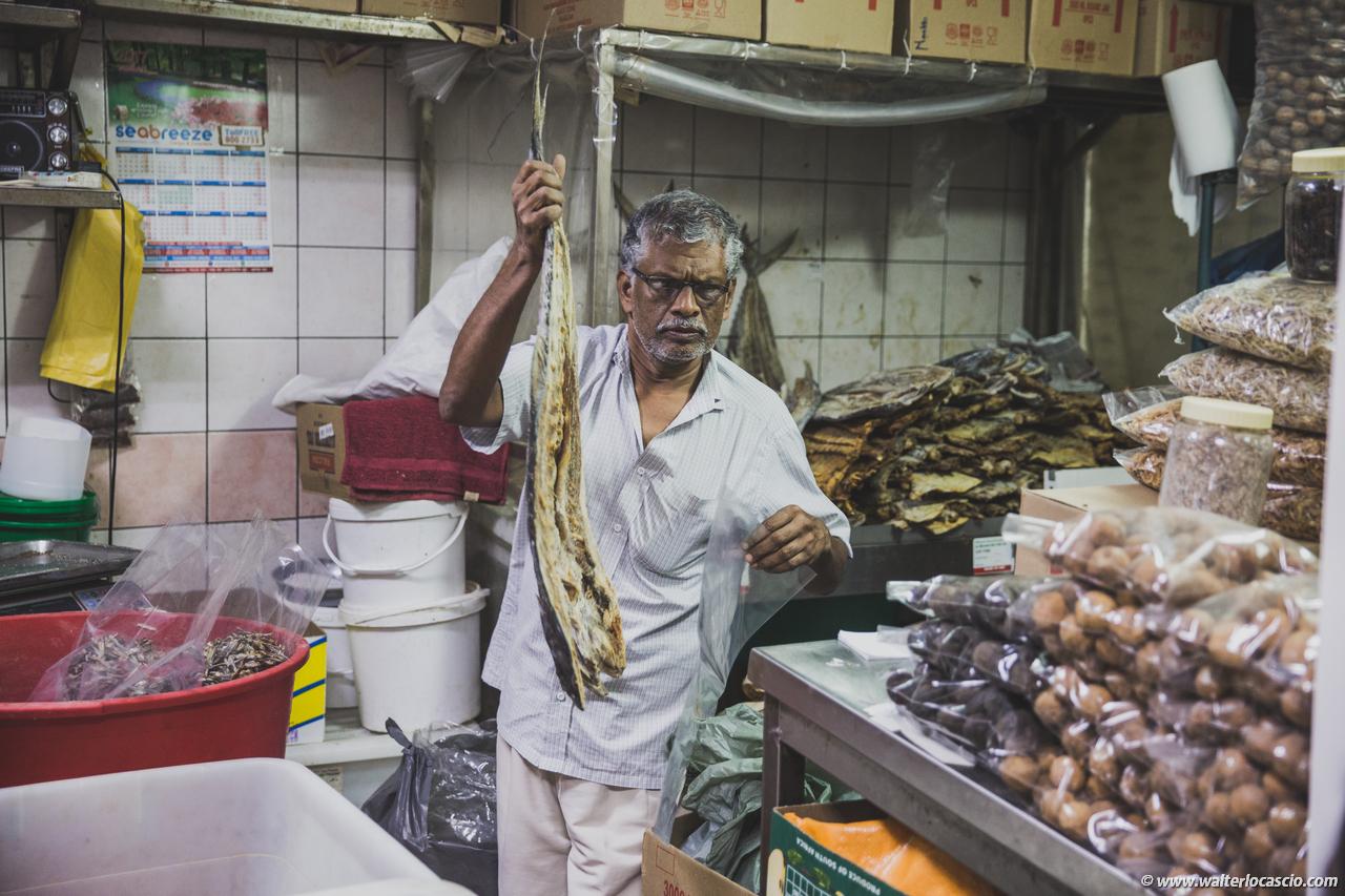 Abu_Dhabi_fish_market (50)