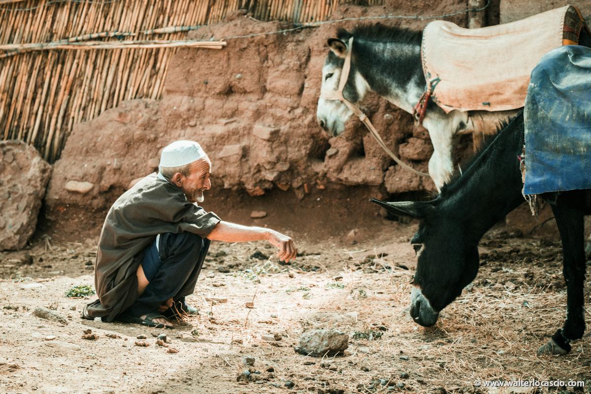 Marocco_Aghmat_Mercato_IMG_1143