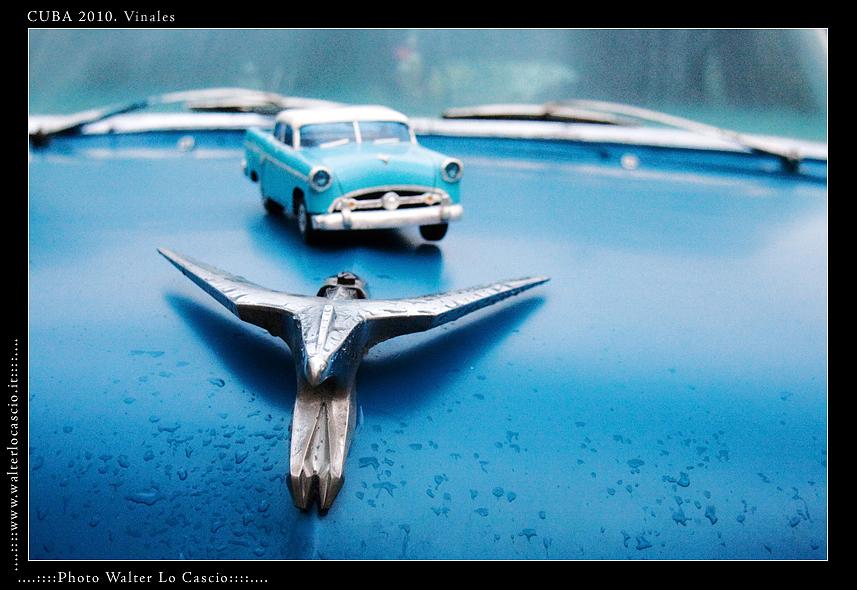 cuba-2010-vinales_5077297449_o.jpg