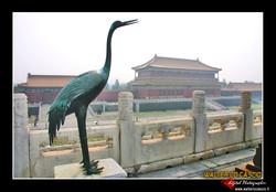 beijing---pechino_4080203420_o.jpg