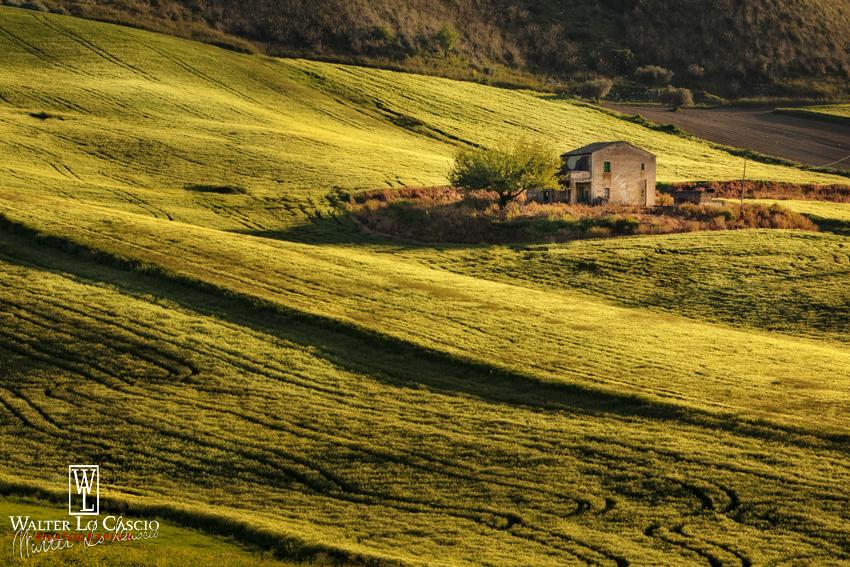 Campagna_siciliana (16).jpg