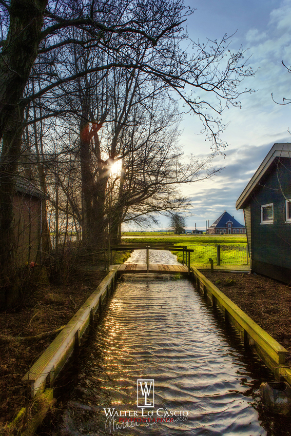 nederland-2014_11936556635_o.jpg