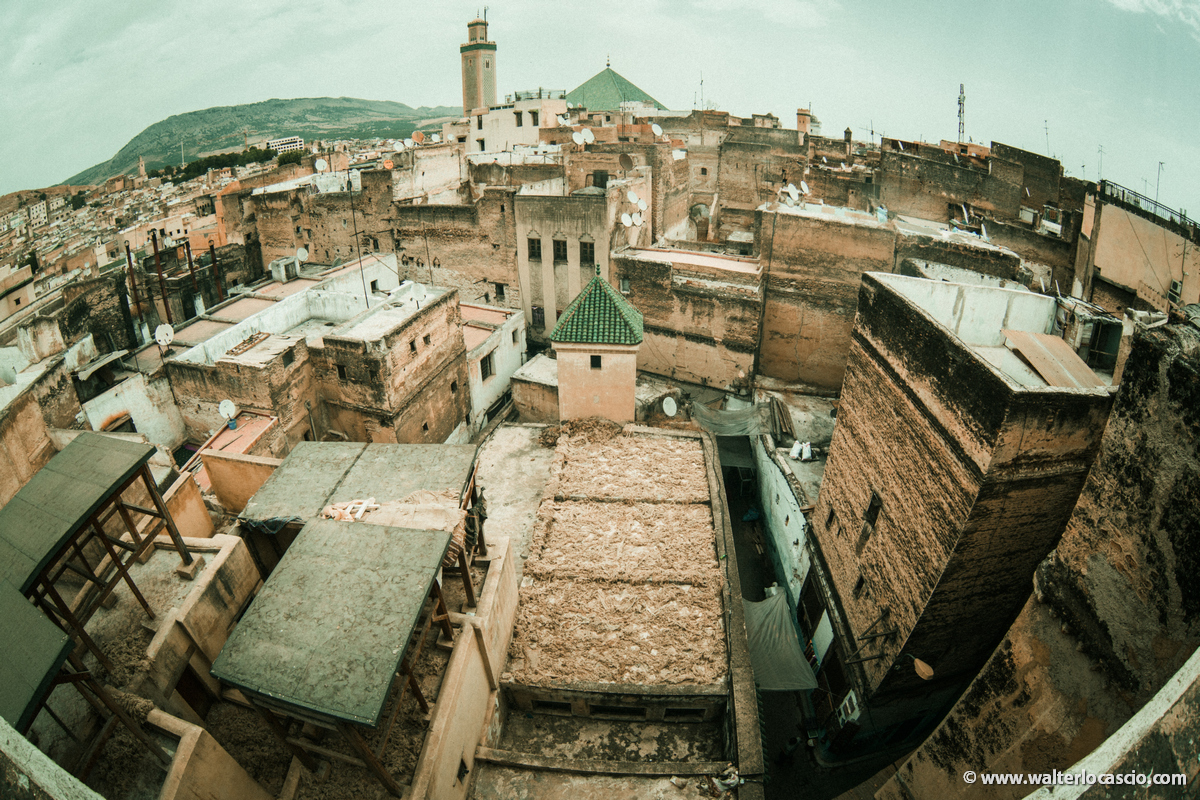 Marocco_Fes_IMG_4295
