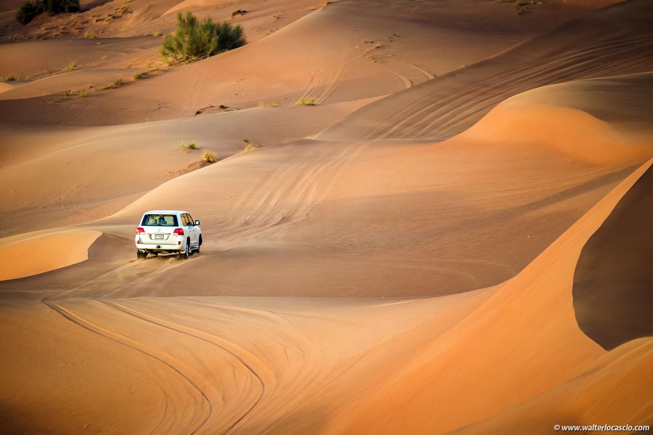 dubai_deserto (16)