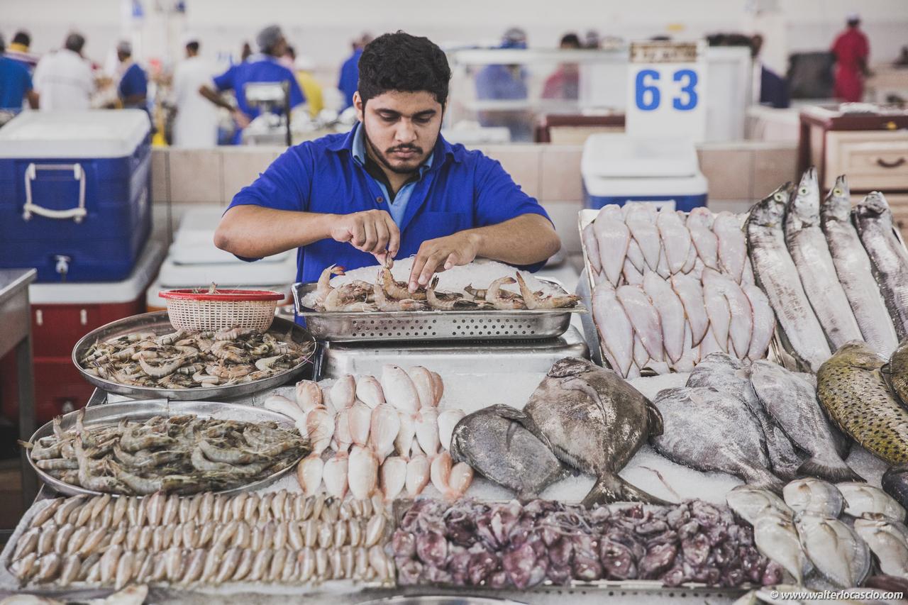 Abu_Dhabi_fish_market (36)