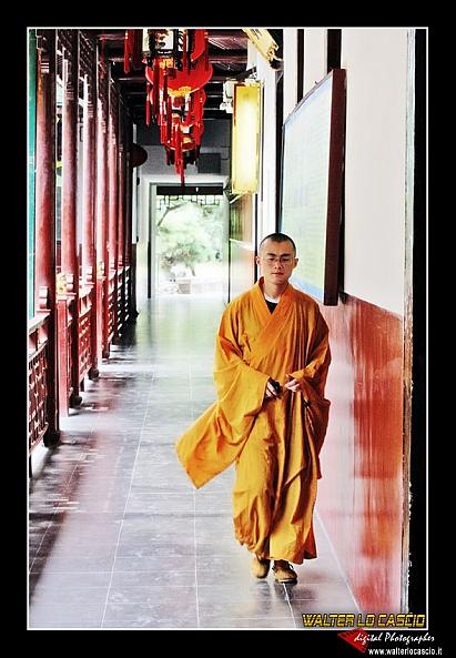 shanghai_4088584015_o.jpg