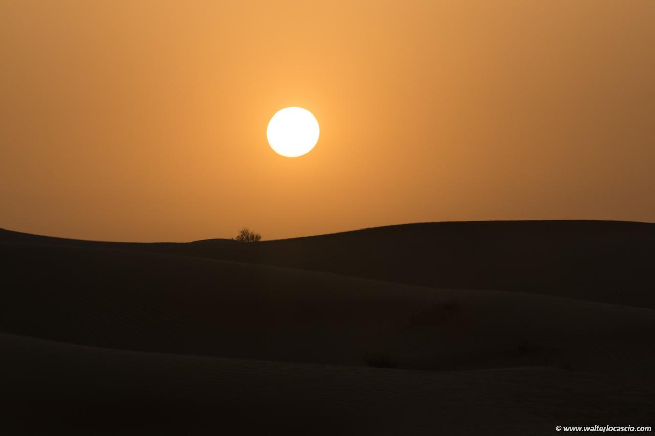 dubai_deserto (24)