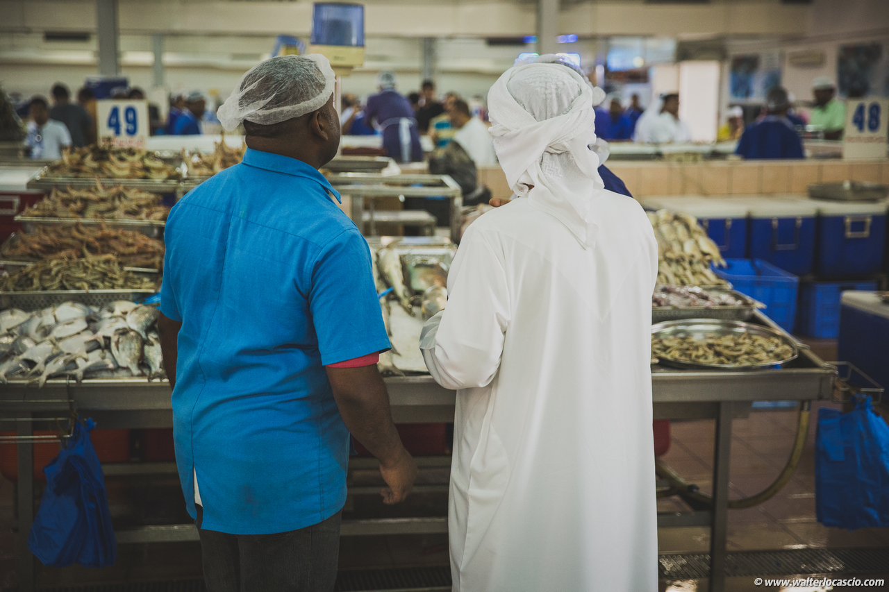 Abu_Dhabi_fish_market (21)
