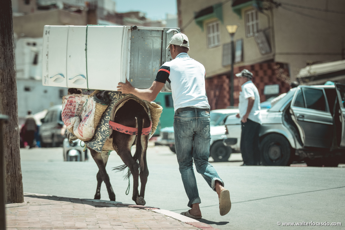 Marocco_MOULAY_DRISS_ZERHOUN _IMG_0100