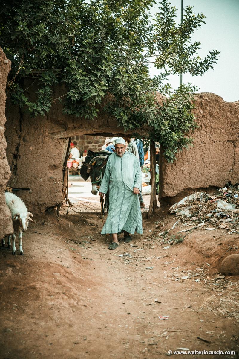 Marocco_Aghmat_Mercato_IMG_5646
