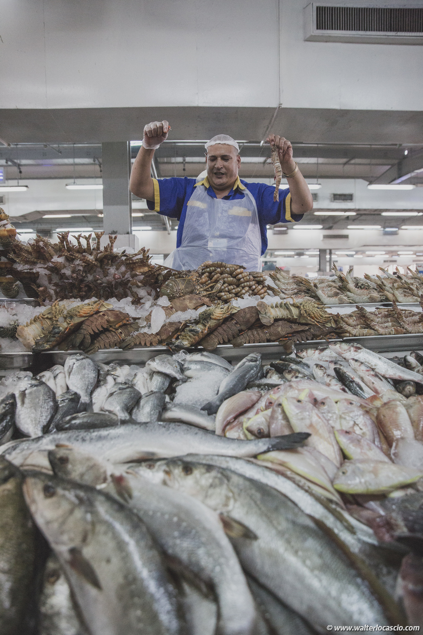 Abu_Dhabi_fish_market (35)