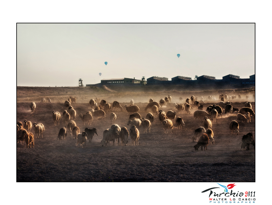 turchia-2011-cappadocia_6176057594_o.jpg