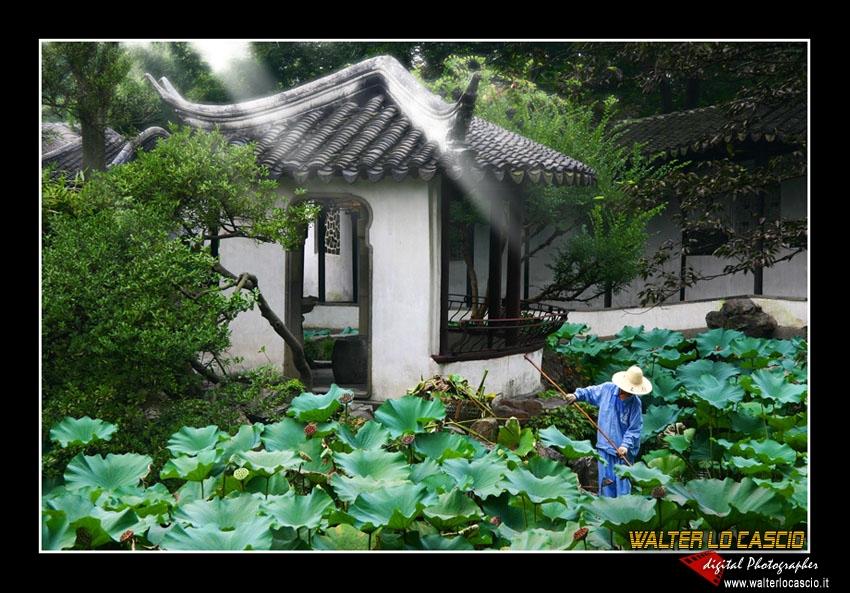 suzhou-e-tongli_4088534329_o.jpg