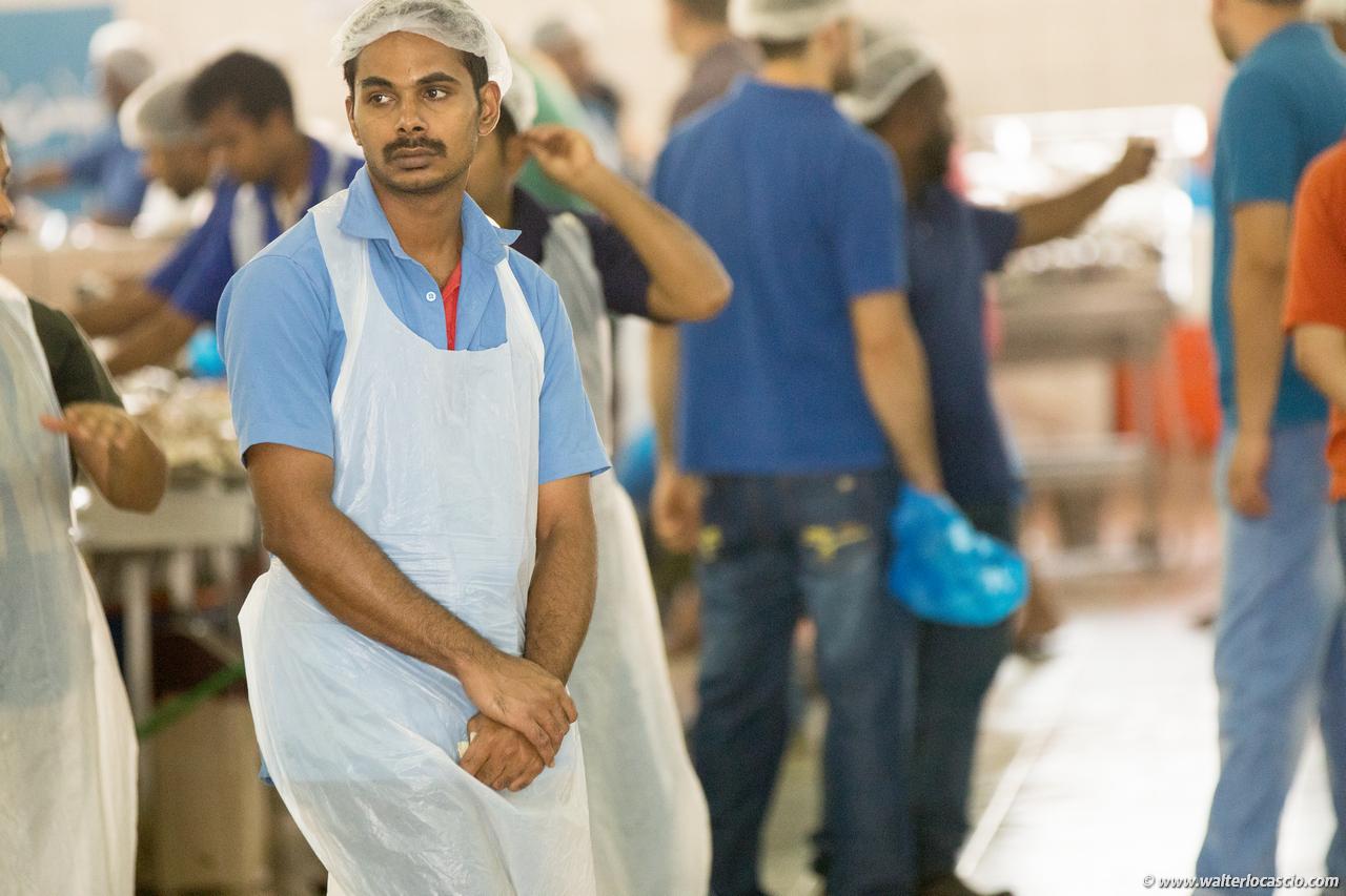 Abu_Dhabi_fish_market (1)