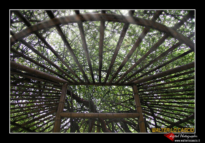 suzhou-e-tongli_4088533835_o.jpg