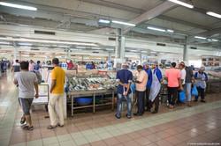Abu_Dhabi_fish_market (23)