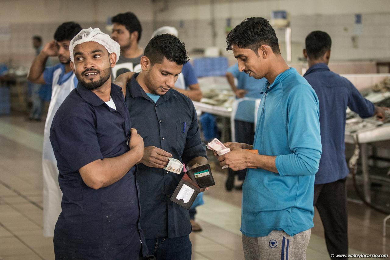 Abu_Dhabi_fish_market (3)