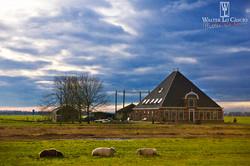 nederland-2014_11903742274_o.jpg