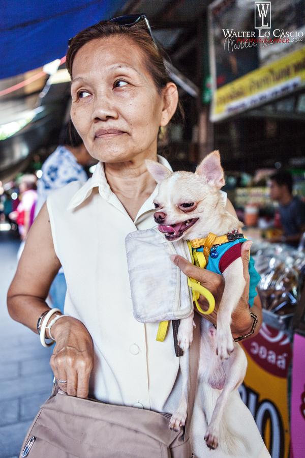 thailandia-2014_15173119860_o.jpg