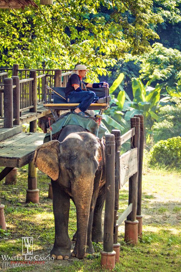 thailandia-2014_15164444778_o.jpg