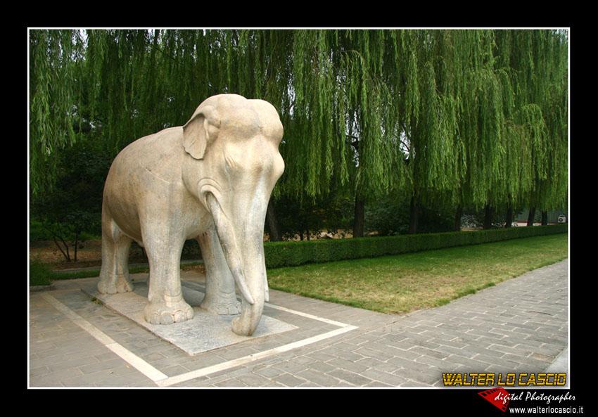 beijing---pechino_4079456789_o.jpg