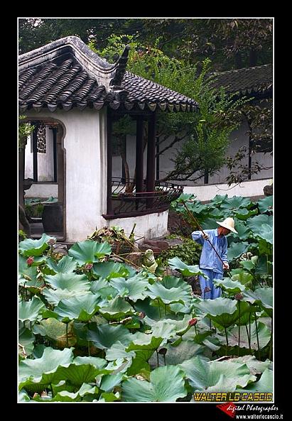 suzhou-e-tongli_4089280680_o.jpg