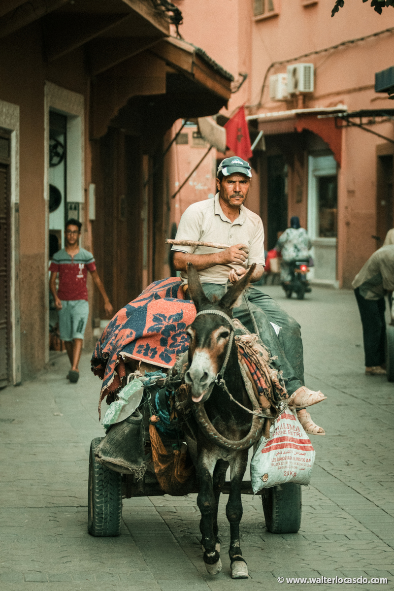 Marocco_Marrakech_IMG_0885