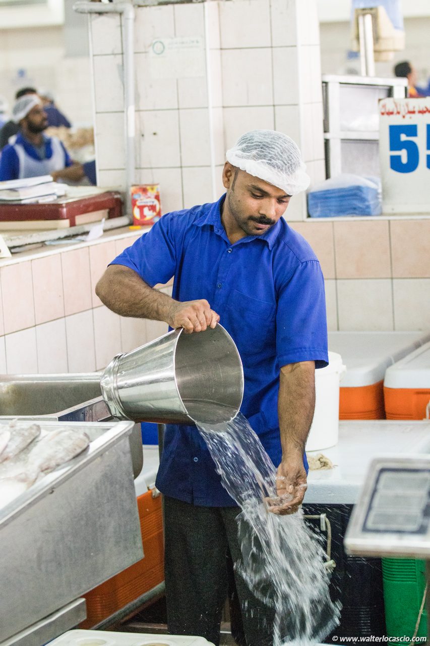 Abu_Dhabi_fish_market (17)