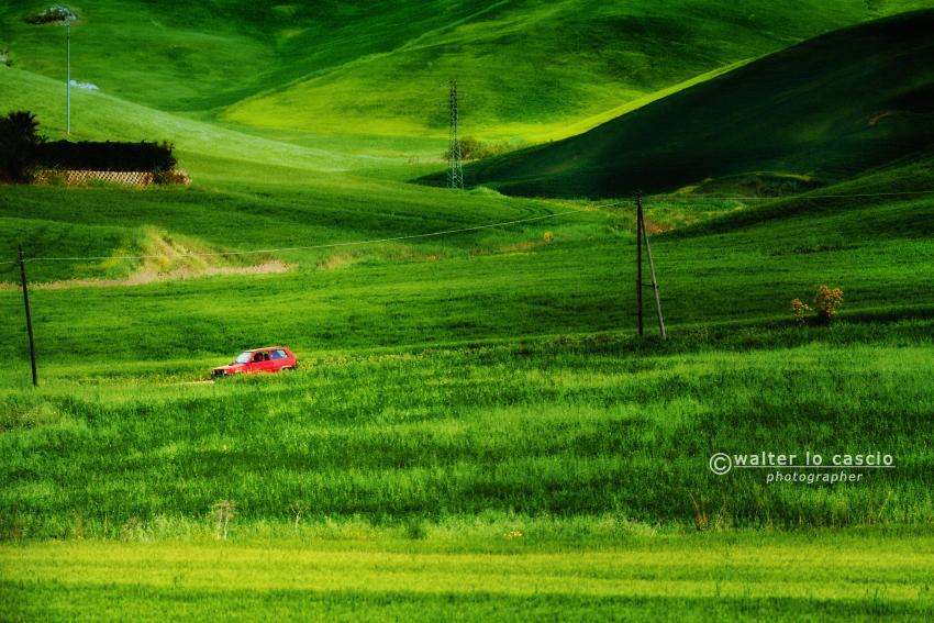 Campagna_siciliana (2).jpg
