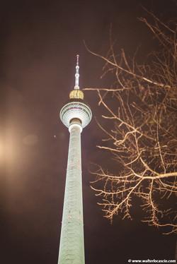 Berlin (66)