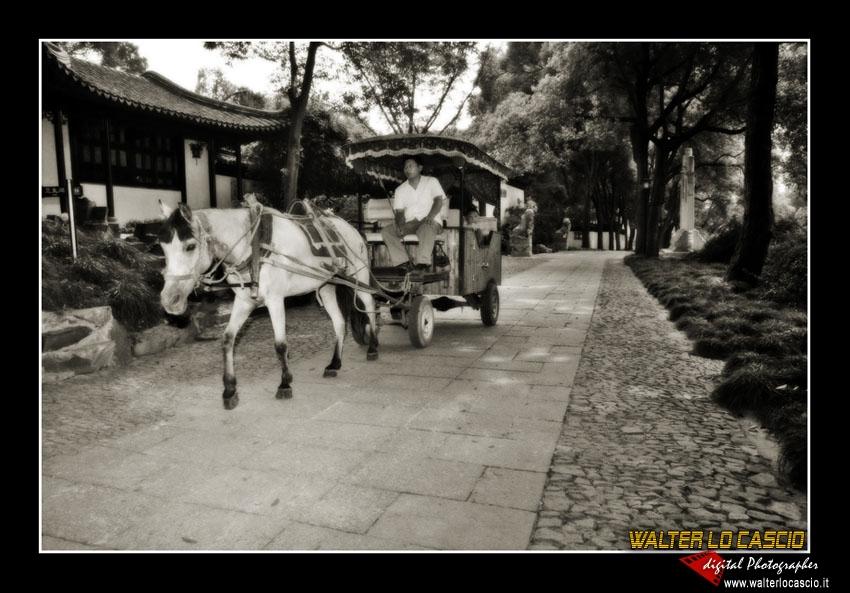 suzhou-e-tongli_4089308174_o.jpg