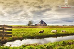 nederland-2014_11937009034_o.jpg
