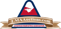 AuctionLogo.png