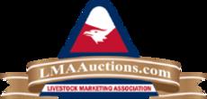 AuctionLogo.png