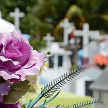 Beerdigung_Friedhof_Blumen_edited.jpg