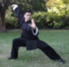 Master Song Shaoling Kung Fu Wushu