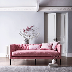 pink-sofa-fain.png