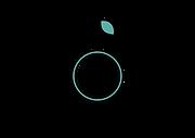 PRACTICA NUTRICION_logo_Tavola disegno 1