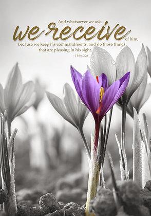 We Receive