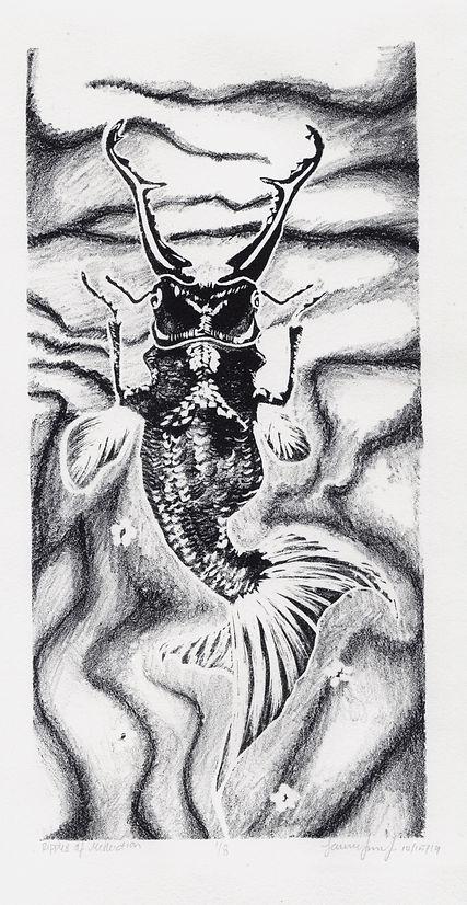 ripplesofreflection.beetlefish.jpeg