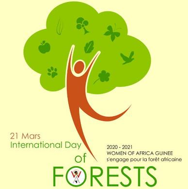 Journée mondiale des Forêts