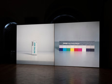 Diapozitiv - Matei Bejenaru, 2020